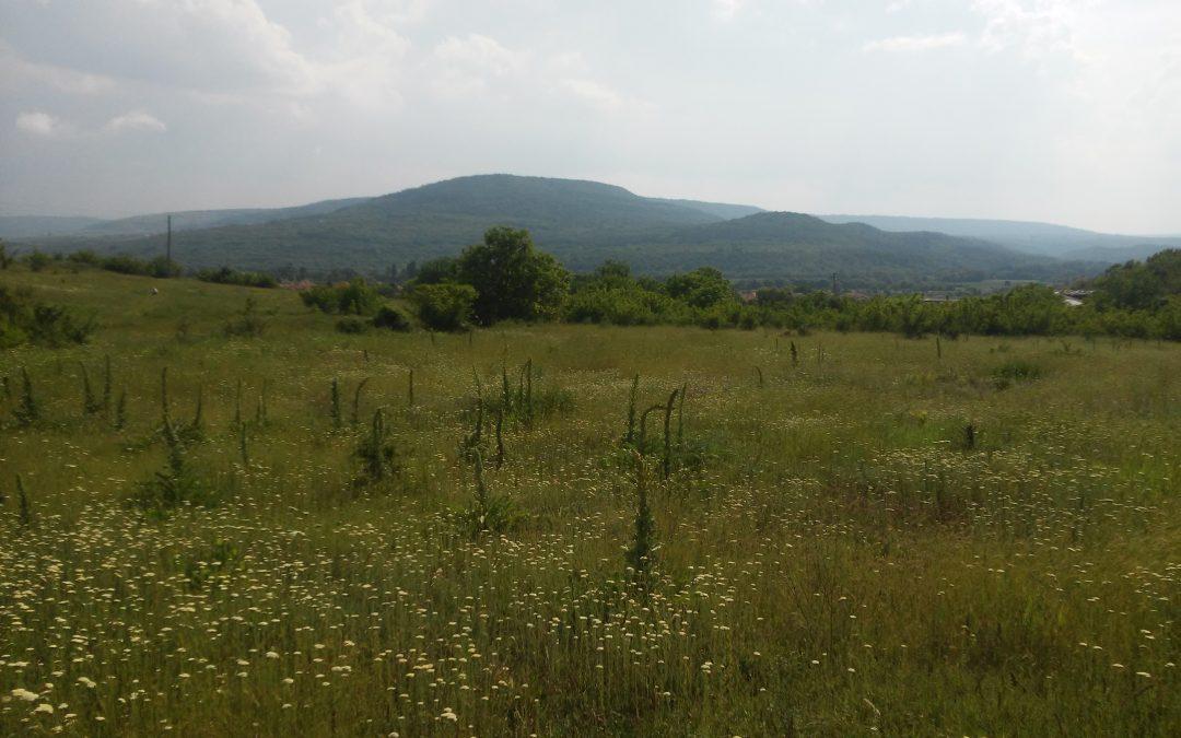 Изгодна земя до к.к.Албена.